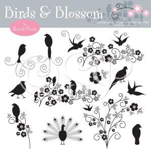Stylish Birds and Blossom Graphics